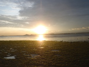 Sunrise at Chek Jawa