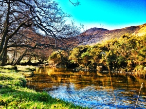 Stream at Lochranza on the Isle of Arran, Scotland