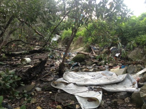 All kinds of trash accumulate in our mangroves