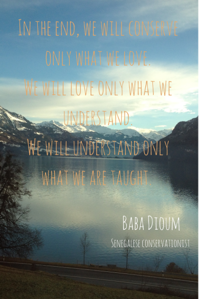 Baba Dioum quote