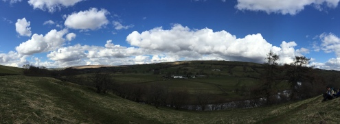Sunshine in Teesdale