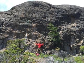 Found a little bit of rock that seemed climb-able